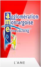Logo agglo montargeoise